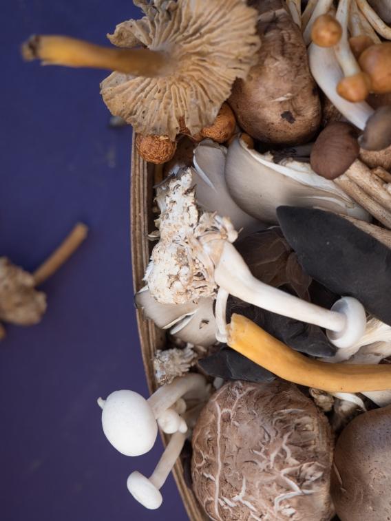 ChronicKitchen-FarmersMarket-Mushrooms4