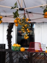 ChronicKitchen-FarmersMarket-Orange-Hanging1