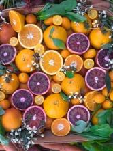 Citrus-Pretty2