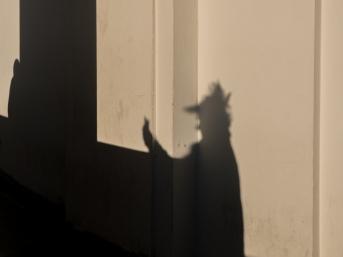 LosAngeles-GriffithPark-Shadow-Person-Selfie