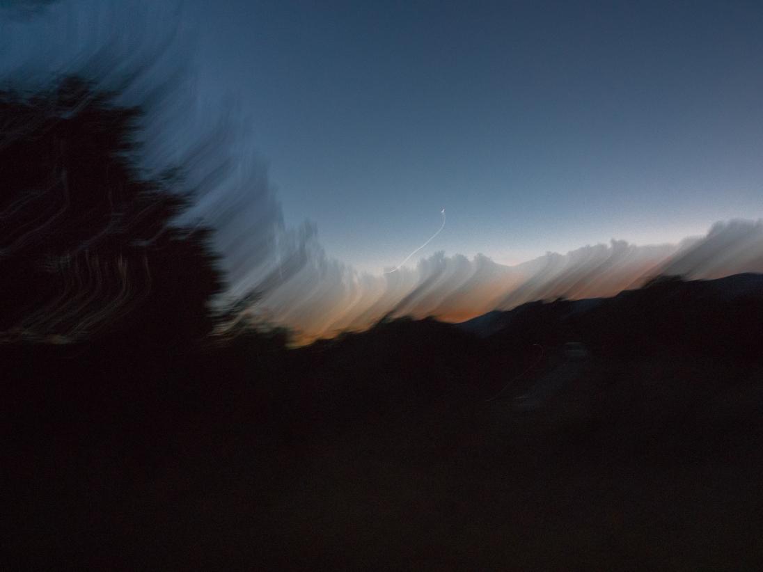 Ojai-Tree-Blur