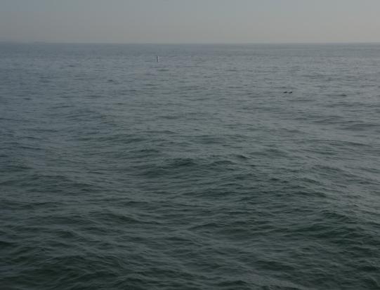 Ocean-Calm