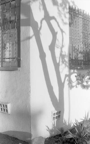 SantaMonica-NeighborBuildingShadow